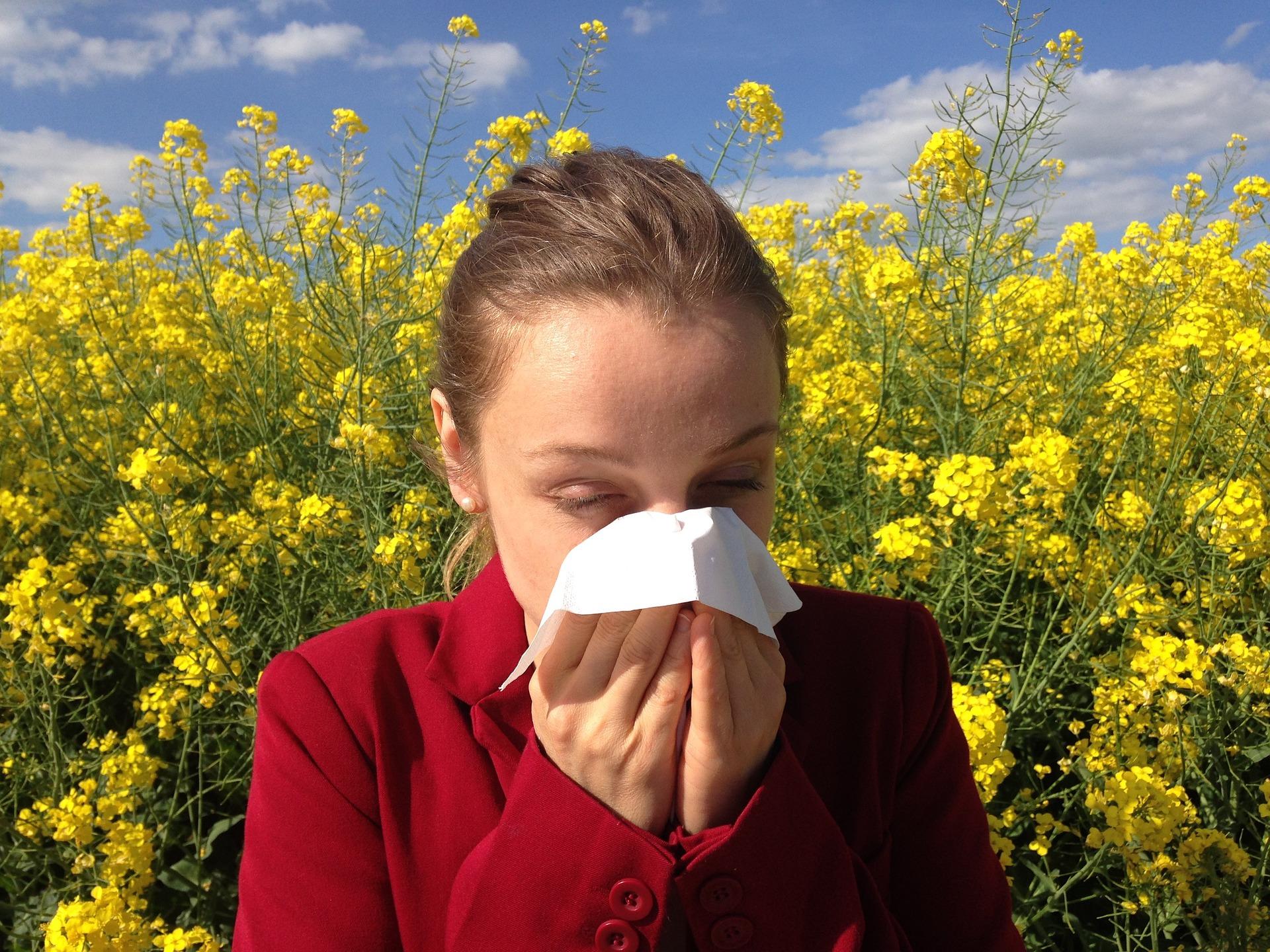 Estudio sobe la acupuntura para la alergia estacional